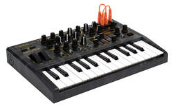 Arturia - Arturia MicroBrute Creation Edition Anolog Synth