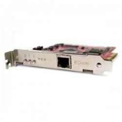 Focusrite - Focusrite RedNet PCIe Kart