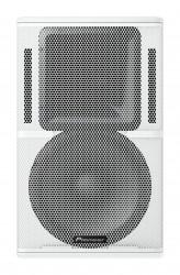 Pioneer Pro Audio - Pioneer Pro Audio XY-122 12 İnç 2 Yollu Pasif Hoparlör
